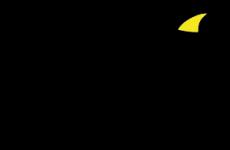 Sharky_logo